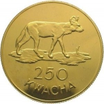 250 Kwacha (Conservation - African wild dog)
